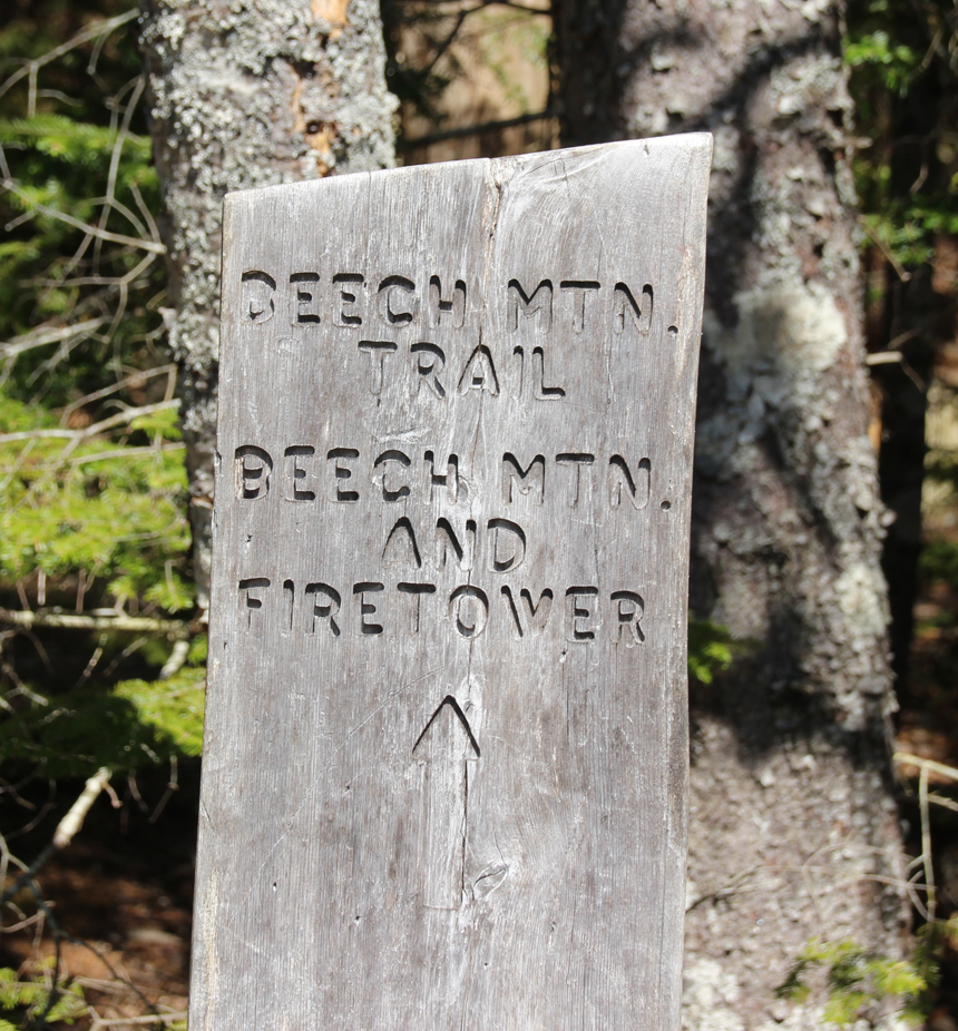 Beech Mountain Trail and Firetower